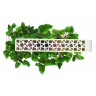Умный сад Click and Grow Smart Herb Garden - Базилик (в комплекте 3 картриджа) -